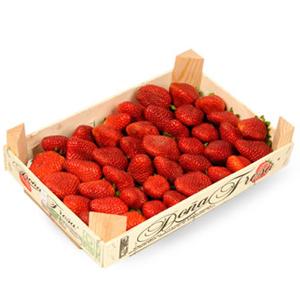 fraise plateau