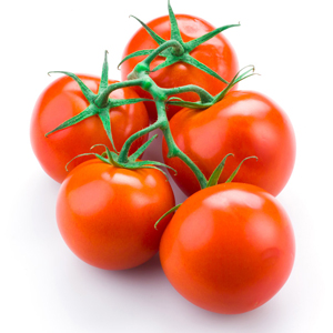 TOMATE GRAPPE FRANCE