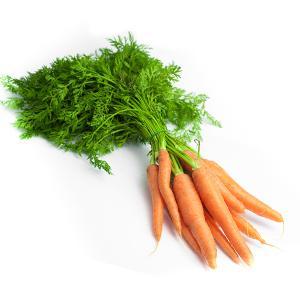 carotte fane botte