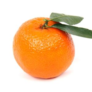 clementine ORRI feuille